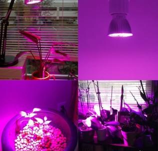 Лампы флора LED 7-50W для гидропоники и аквариума